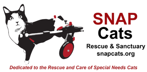 An image promoting one of Summit State Bank's featured partners, Snap Cats, who rescues and takes care of special needs cats.