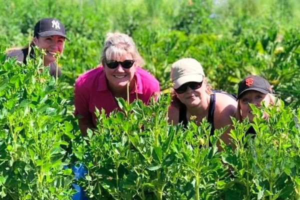 Group of Summit State Bank 4 summit state bank employees in tall grass as they volunteer for a local non profit